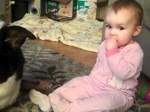 cutest dog and baby sharing cheerios (2).mp4