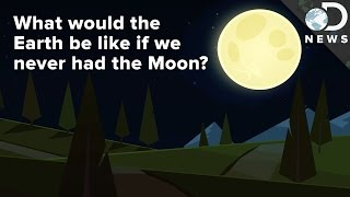 What If Earth Never Had A Moon?