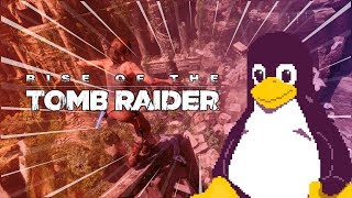 Rise of the Tomb Raider  | The Linux Gamer
