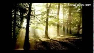 (তাল তমাল) Taal Tomaler Bonete by Band Lalon