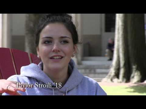 Early Action Stories - Taylor Stroili '18