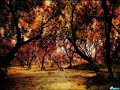 In Your Park - Scorpions