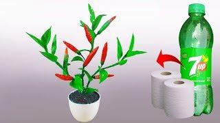 বোতল আর টিস্যু দিয়ে মরিচ গাছ তৈরি || Chili, Pepper tree With Tissue Plastic Bottle || Paper clay
