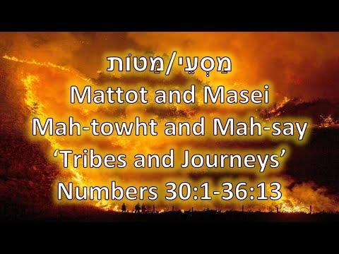 Torah Portions: Mattot and Masei