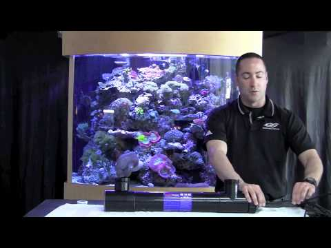 Fish Guy TV UV Sterlizers