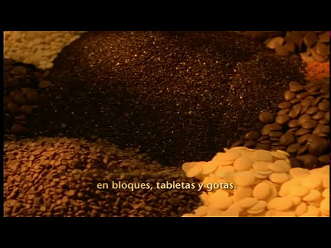 Del cacao al chocolate - Barry Carrebaut