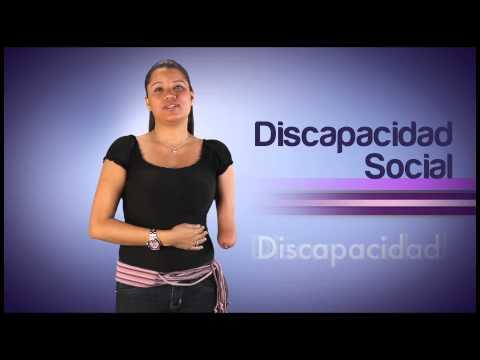 Módulo Discapacidad parte 2 del Video Diccionario de Lengua de Señas Venezolana Tomo 3