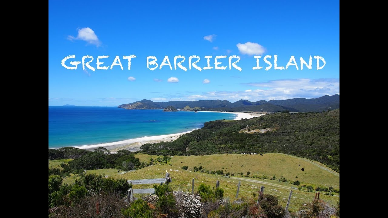 Great Barrier Island New Zealand YouTube