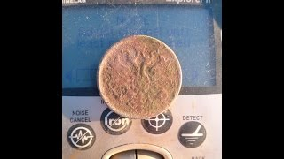 Digging coins...one field finds!