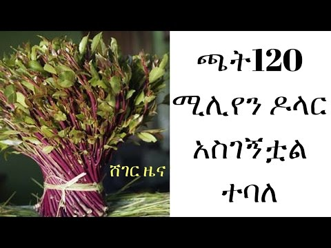 Ethiopia Earned $120 million from Khat Exports