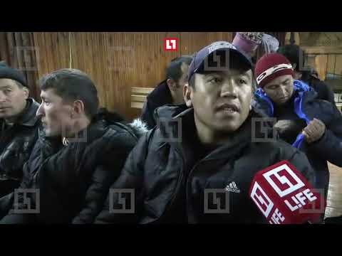 Выжившие в автокатастрофе под Владимиром рассказали как спасались