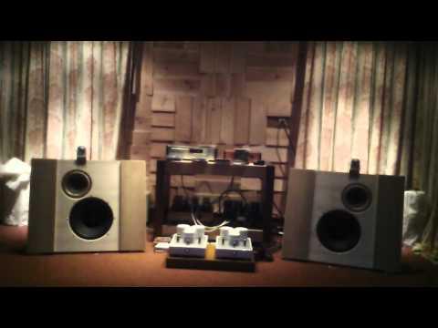 Musical Affairs Open Baffle Field Coil Loudspeaker #10