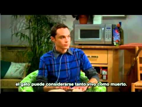 Gato de Schrdinger - The Big Bang Theory - Sub Esp.