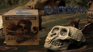 PRACHTVOLL! - BlackBoxx Barbarossa ►High-End-Feuerwerksbatterie