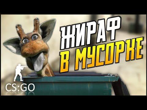 CS:GO - ЖИРАФ В МУСОРКЕ!