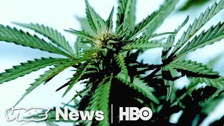Pesticide-Free Pot & Trump's Move on HIV/AIDS : VICE News Tonight Full Episode (HBO)