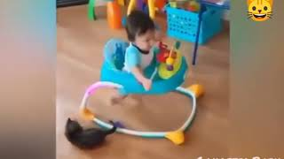 Funny babies are the hardest try not to laugh challenge - Super funny baby | Gangster Baby
