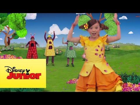 El jardín de Clarilú: A Cantar Contando - Video Musical