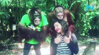 Love reloaded! Chimpanzee showers kisses on Sambhavna Seth