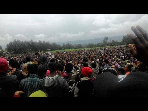 Ethiopia: Addis Ababa, Bale And Shashemene Protest