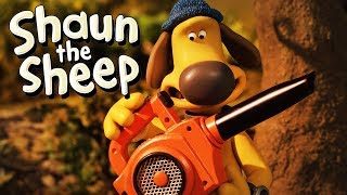 Persoalan Tajam [A Prickly Problem]   Shaun the Sheep   Full Episode   Funny Cartoons For Kids