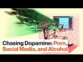 How We Chase Dopamine Porn Social Media And Alcohol Steven Kotler mp3