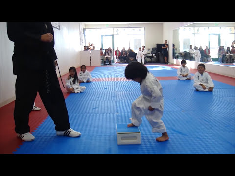Little Boy's First Taekwondo Board Break Test