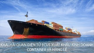 Hướng Dẫn Khai Hải Quan Điện Tử Xuất Khẩu Kinh Doanh Đường Biển Container và Hàng Lẻ