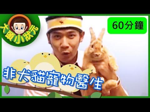 台灣-大頭小狀元-EP 009 非犬貓寵物醫生、 玩具醫生