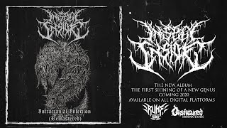 INSECT INSIDE - INTRACRANIAL INFECTION [SINGLE] (2020) SW EXCLUSIVE