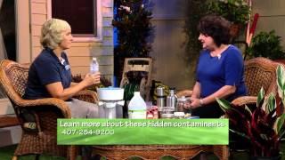 Central Florida Gardening - Hidden Contaminants In Your Home