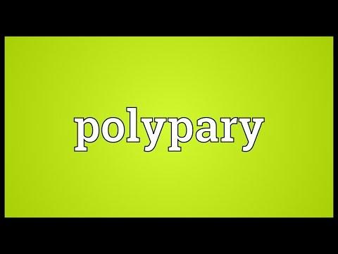 Header of polypary