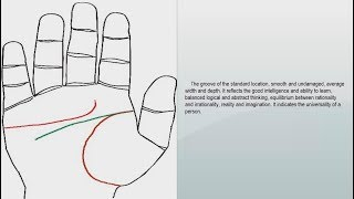 INTELLIGENCE LINE, HEAD LINE | PALMISTRY & PALM READING |
