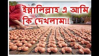 অবৈধ গর্ভপাত ব্যবসা এ আমি কি দেখলাম - illegal abortion clinics - Bangla News 24
