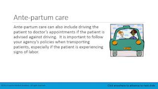 Lesson 4.2   Post partum care