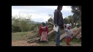 Nacion Mapuche _ Olvidados El pueblo Mapuche, una historia de resistencia
