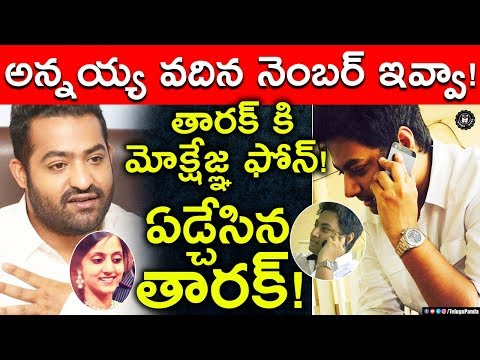 Nandamuri Family Face Internal Disputes | Mokshagnya Want To See Jr NTR's Newborn Son | Telugu Panda