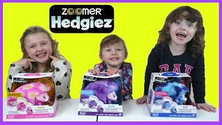 NEW ZOOMER HEDGIEZ | FUN TOYS VIDEOS FOR KIDS | THE DISNEY TOY COLLECTOR