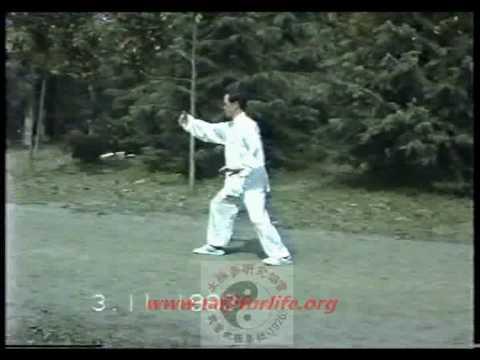 李品银老师 簡化杨式太极拳二十四式