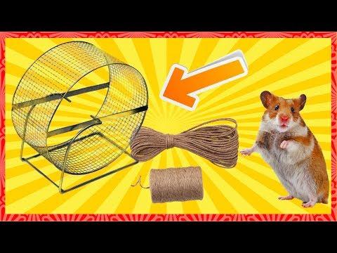 Как сделать колесо хомяк