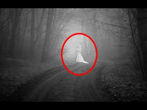 5 Most Haunted Forests & Woods In England