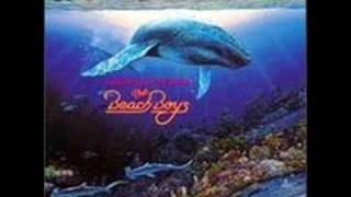Watch Beach Boys Lahaina Aloha video