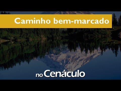 Caminho bem marcado | no Cenáculo 03/09/2021