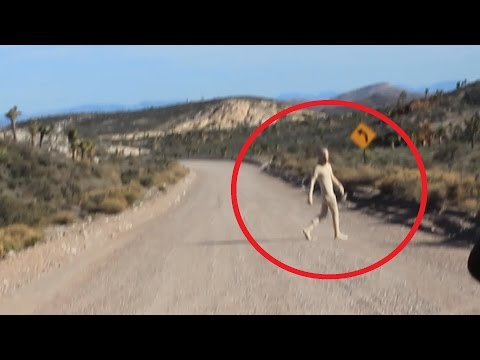 Area 51 Alien Sighting 2015