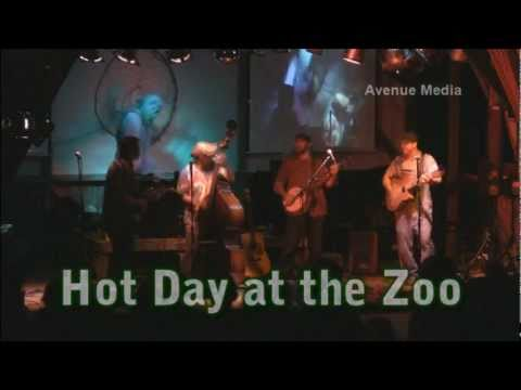 Hot Day At The Zoo ~ Live At Harry's Hoe Down 2011 video