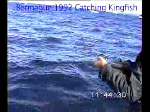 Bermagui 1992 Kingfish.mp4