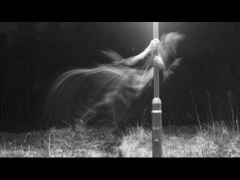 Przerażające I Niewyjaśnione Zdjęcia (06) Duchy Oraz Zjawy
