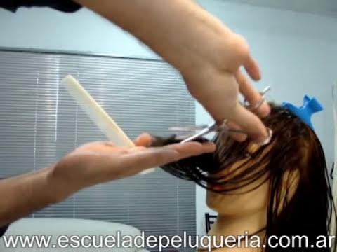 Woman Hair Cut Step by Step - Corte melena clasica