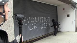 Trump Protesters Smash Windows, Riot in D.C.