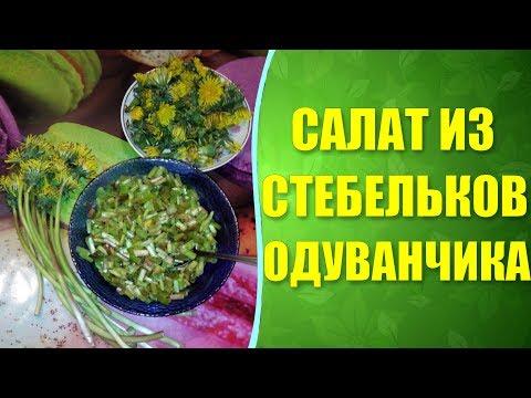 ✔ Салат из одуванчиков по рецепту Натальи Кобзарь. Польза одуванчика для здоровья.